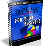 Traffic and SEO for Your Business Newsletter