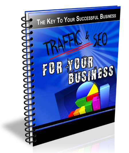 traffic and seo newsletter
