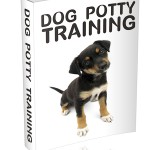 Dog Potty Training (MRR eBook)