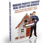How To Make Money In Property (MRR eBook)