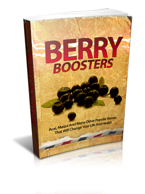 BerryBoosters-softbackSml