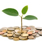 Eco-Friendly Finance PLR 2019 (10 Articles)