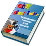 eBay Power Seller PLR eBook + Articles