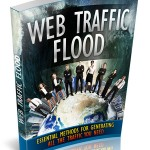 Web Traffic Flood (MRR eBook)