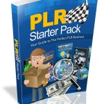 Your Guide to The Perfect PLR Business (MRR)