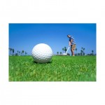 10 Golf PLR Articles