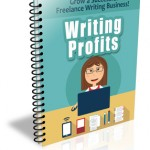 Successful Writing Business Tips Newsletter (12 Issues)