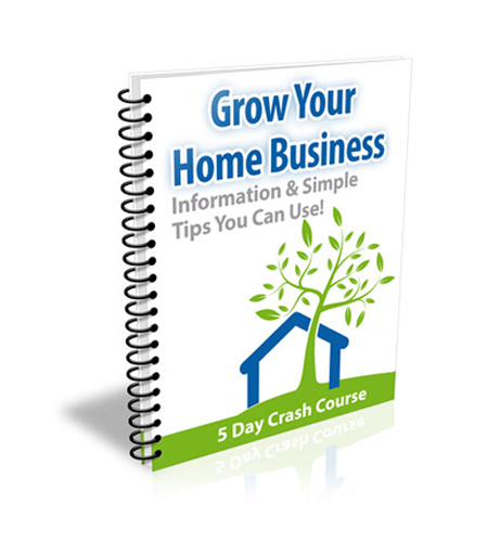How To Grow Home Business