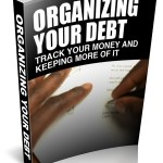 Debt Organizing  (MRR eBook)