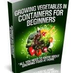 Growing Vegetables In Containers For Beginners (RR Report)