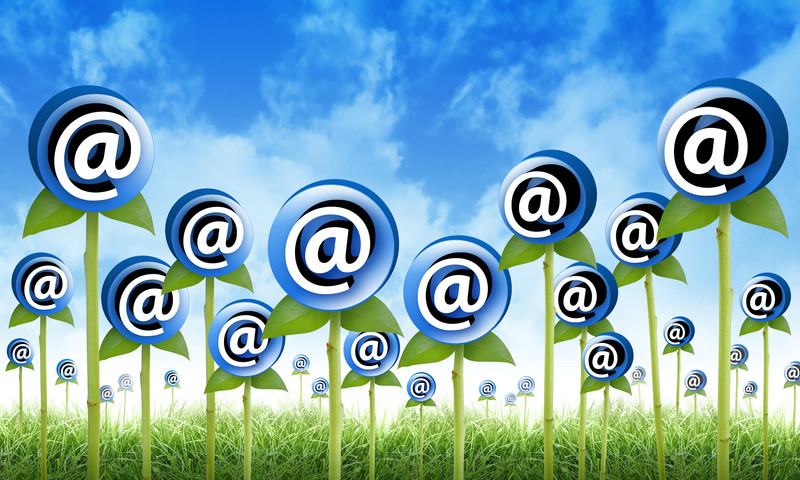 email marketing plr