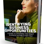 Identifying Business Opportunities (MRR eBook)