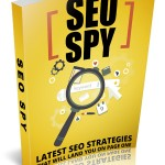 Latest SEO Strategies (Personal Use Rights eBook)