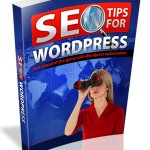 SEO Tips For WordPress (Personal Use Rights)