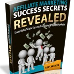 Affiliate Marketing Success (RR eBook)