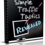 Simple Traffic Tactics Revealed Newsletter (12 Issue)