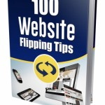 New 100 Website Flipping Tips (MRR eBook)
