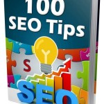 New 100 SEO Tips (MRR eBook)