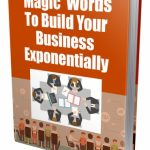 Magic Words To Build Your Business (MRR Report)
