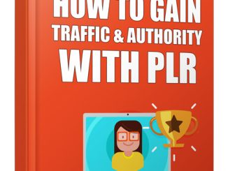 how to gain traffic with plr