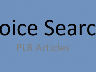 voice search plr