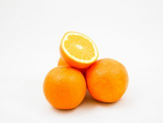 Citrus Fruit PLR